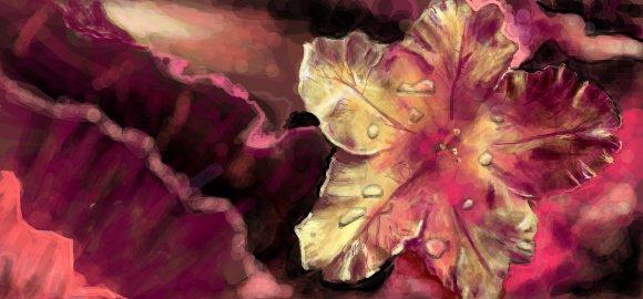 flower digital graffiti art by chris hamner